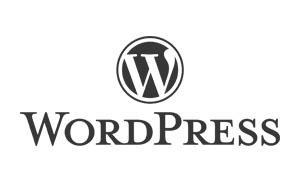 wordpress siti web ecommerce
